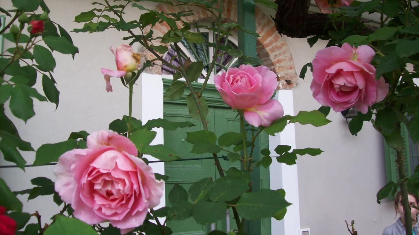 guest-house-acini-e-rose-montalenghe-external-5